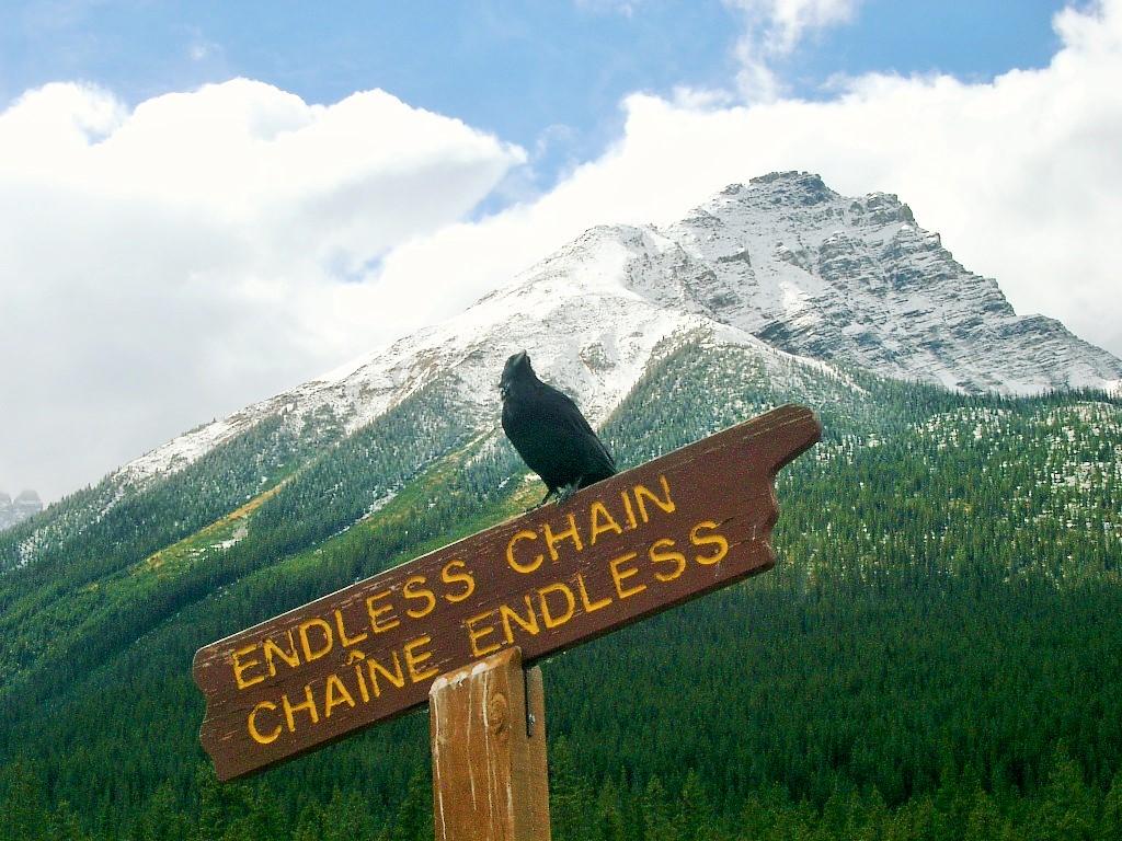 Endless_chain.jpg